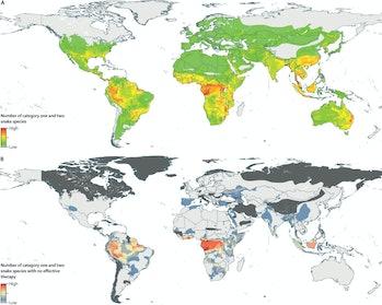 global map of snake bite risk