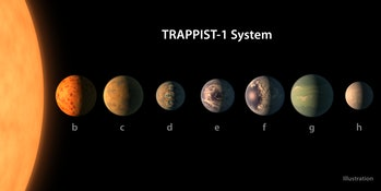 The Trappist star system