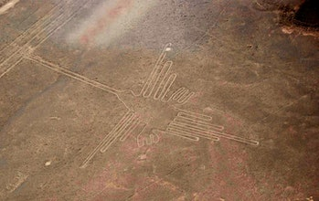 humming bird, Nazca lines