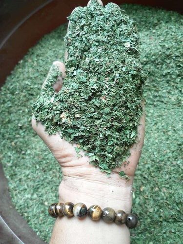 Kratom leaves are harvested, dried, and usually ground to a powder.