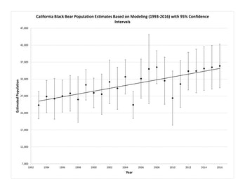 bear population graph