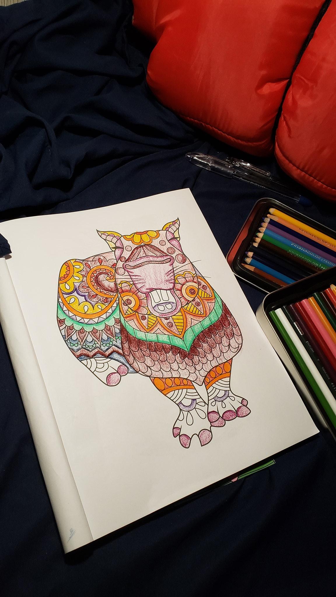 capybara coloring book
