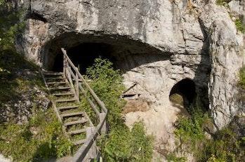 Denisovan, ancient humans
