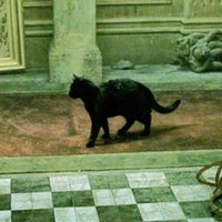 Déjà Rêvé: Video Explains the Creepier Version of Déjà Vu