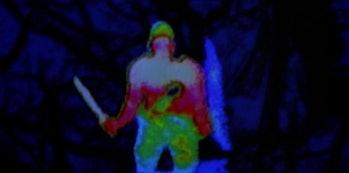 predator thermal vision