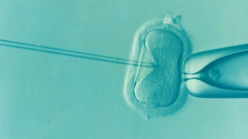 mitochondrial disease IVF designed babies