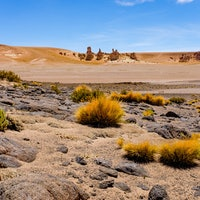 NASA Tests Life-Finding Tech in Chile For Future Mars Missions