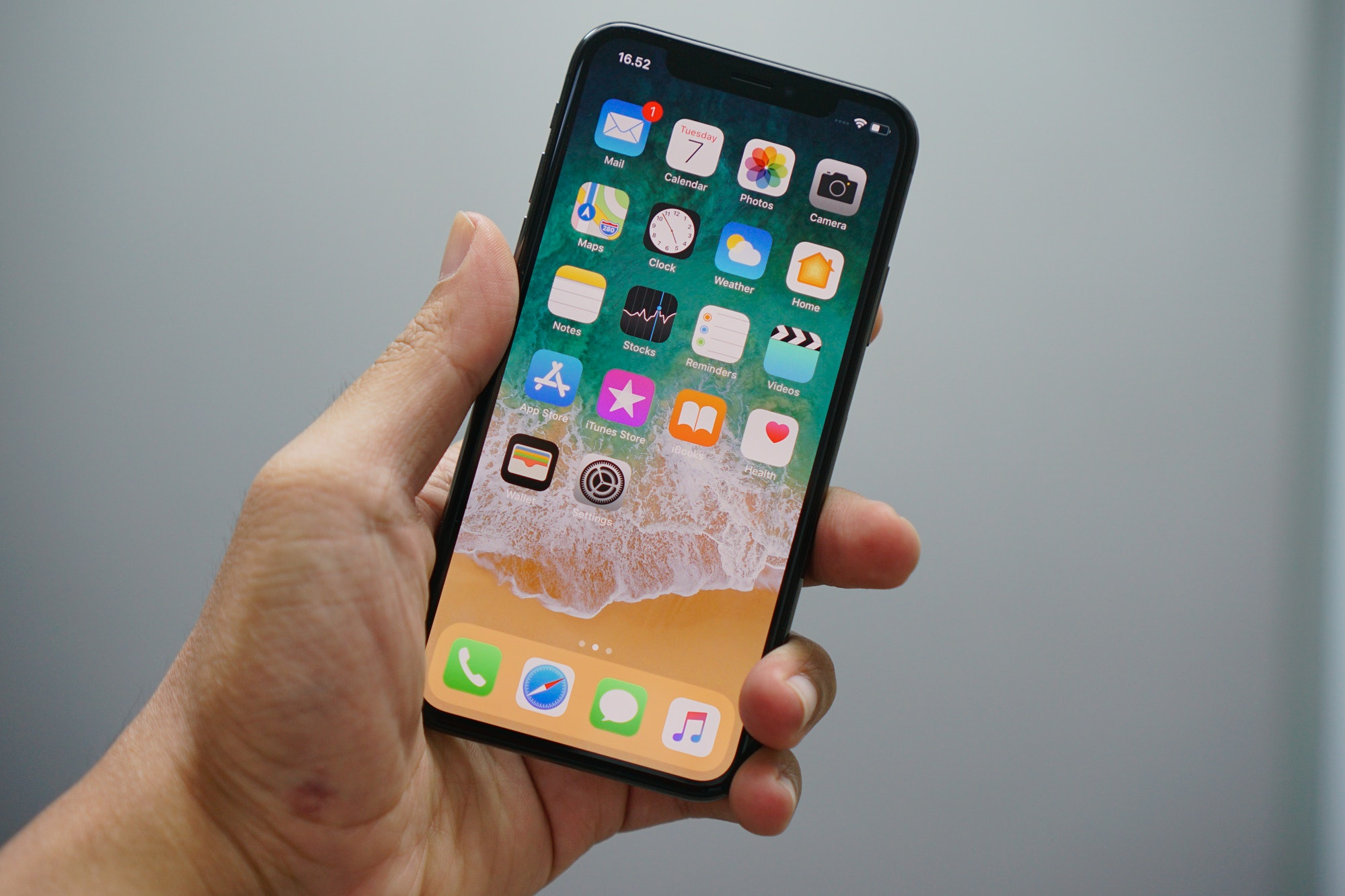 iPhone X in hand.