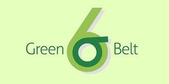 The Complete Six Sigma Green & Black Belt Training Bundle