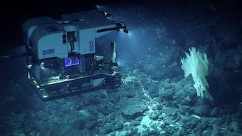 NOAA ROV Deep Discoverer
