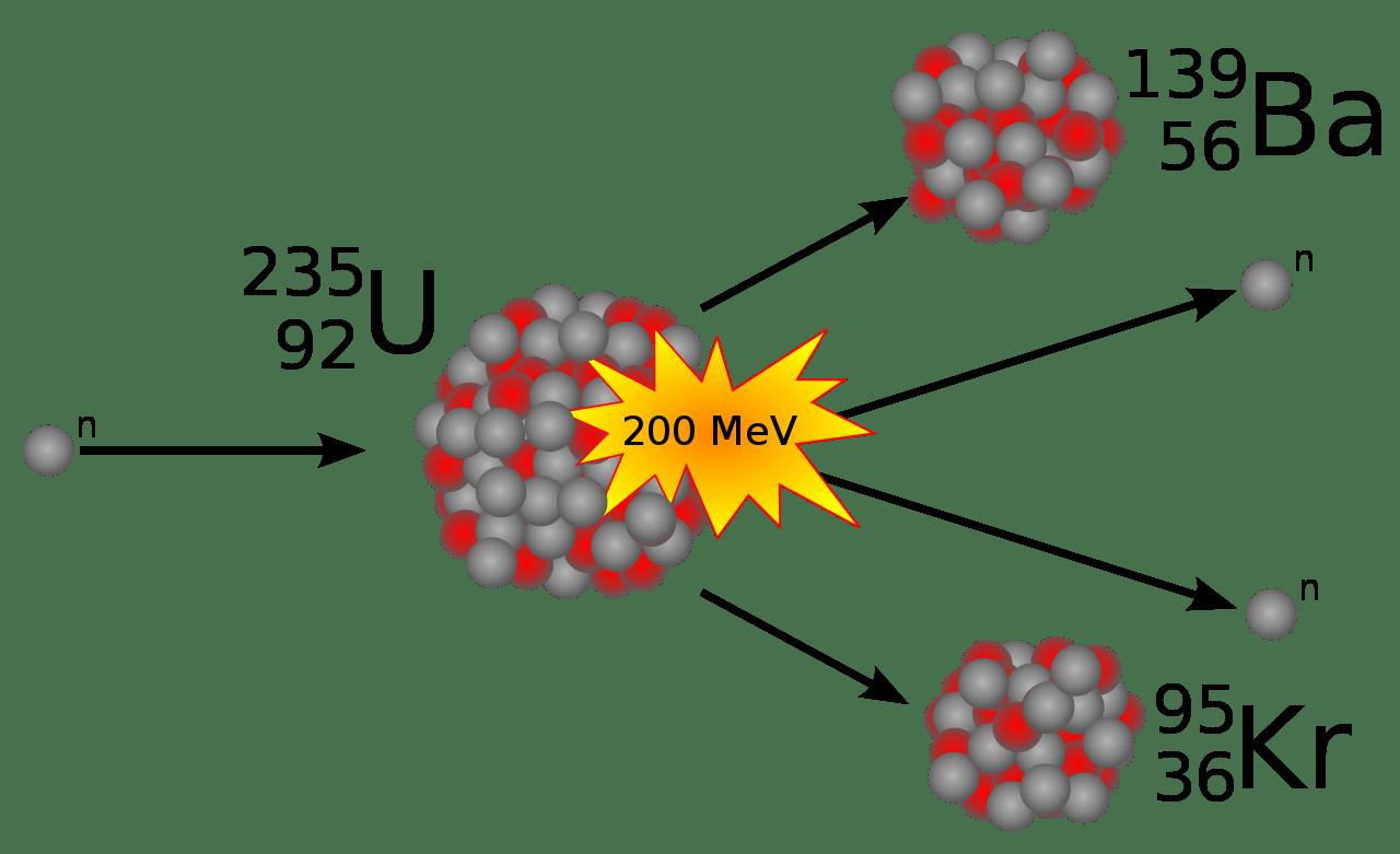 nuclear fission of uranium