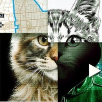 Netflix's 'Don't F**k with Cats' asks: Who's watching me watching you?