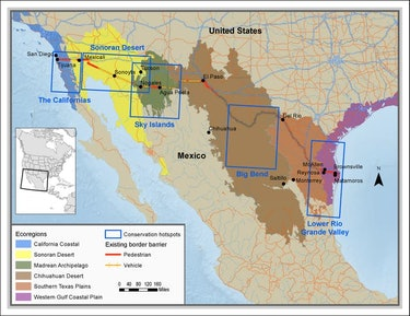 species disrupted by border wall