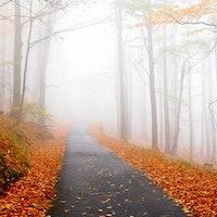 Travel Essentials For Fall Getaways