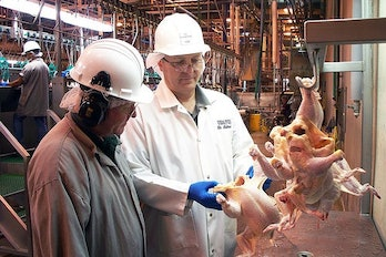 Government inspectors review processing plants for safe handling practices.