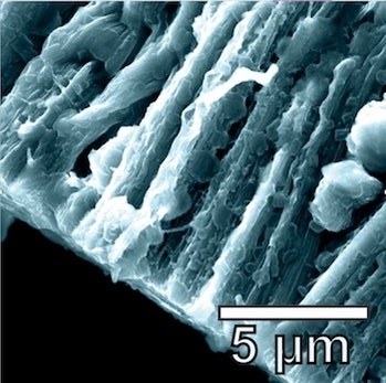 Lithium metal coats the hybrid graphene