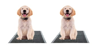 The Green Pet Shop Eco-Friendly Bamboo Rayon Training Pads