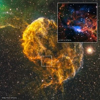 "This ""Jellyfish Nebula"" is the Result of a Stellar Explosion"