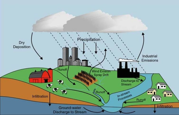 Nutrient pollution sources include decaying organic material; fertilizers applied to crops, lawns and golf courses; manure from fields or feedlots; atmospheric deposition; groundwater discharge; and municipal wastewater discharge.