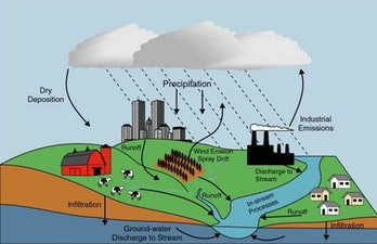Nutrient pollution sources include decaying organic material; fertilizers applied to crops, lawns an...