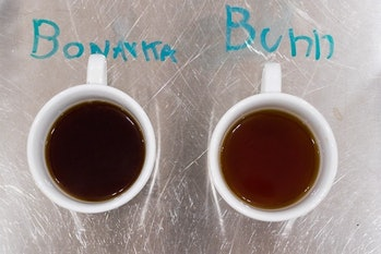 Coffee brewed in the Bonavita was delicious and well-rounded, whereas coffee from the Bunn was visib...