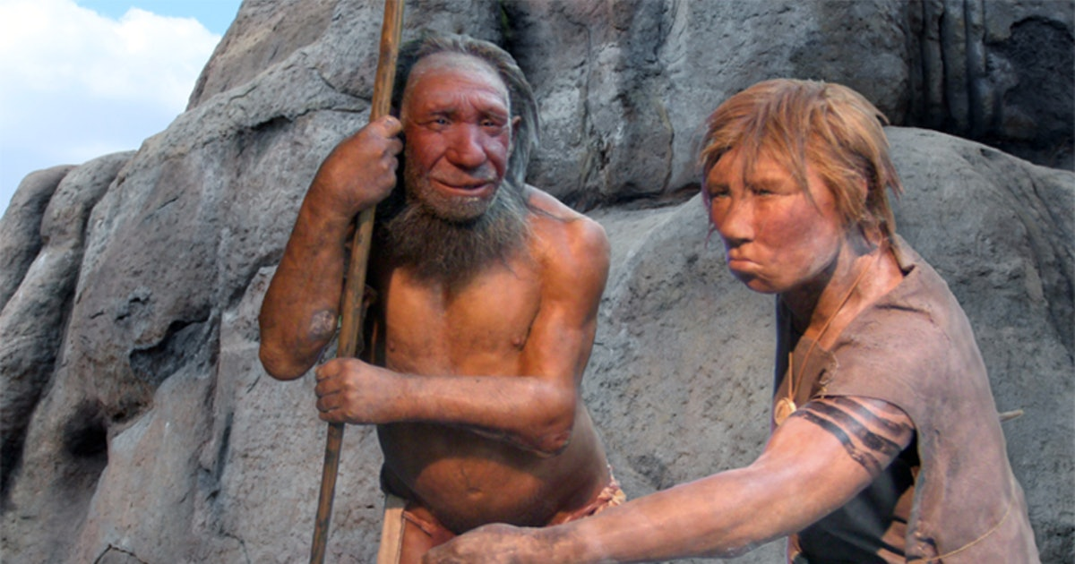 Ancient humans procreated with at least four other species