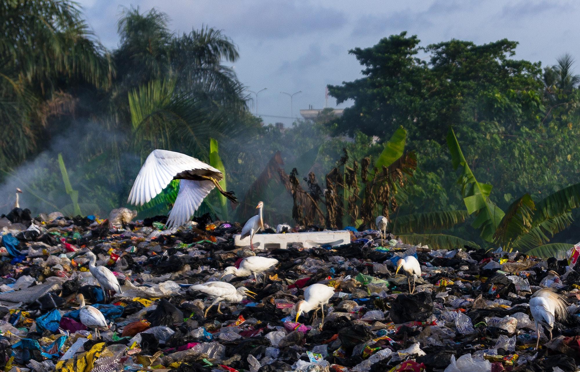 methane landfills