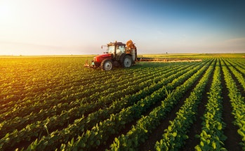 tractor on a soybean field