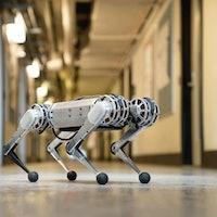 Video of a Backflipping Cheetah Robot Belies a Far Loftier Goal for MIT
