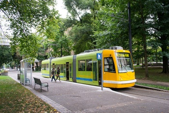 Portland streetcar urban trees forest