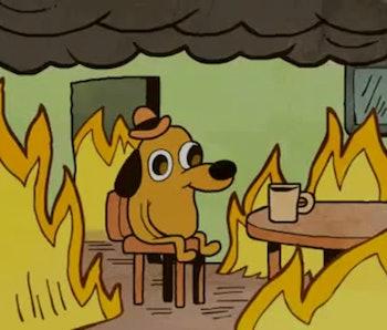 Dog On Fire Meme