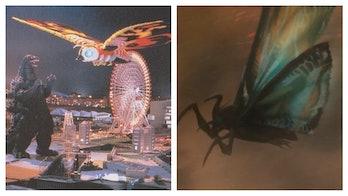 Godzilla King of the Monsters Mothra