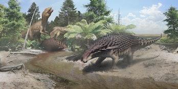 alberta nodosaur royal tyrrell