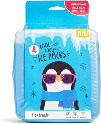 Fit & Fresh Cool Coolers Ice Pack (4-Pack)