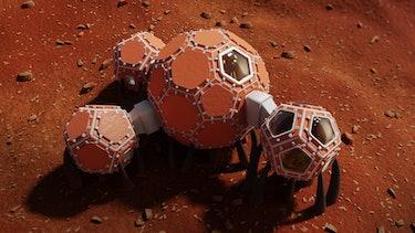 Mars Incubator's design.
