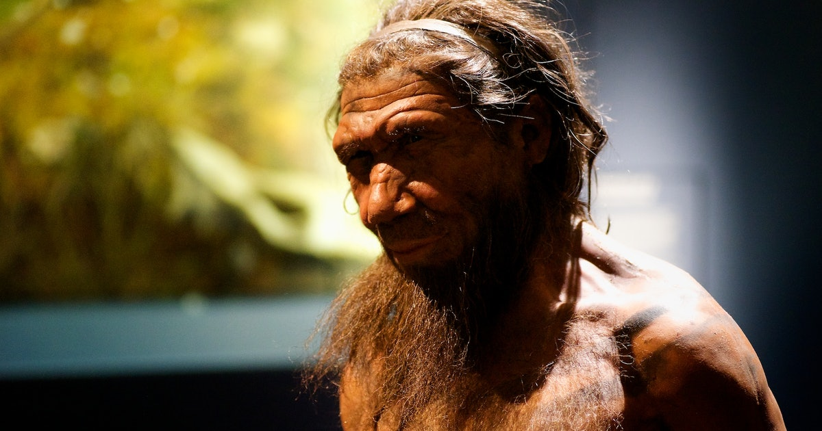 "Neanderthal Study Corrects ""Absurd"" Misconception About Hunched Posture"