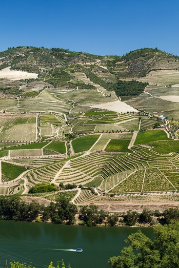 https://www.twin-loc.fr River Douro Valley Portugal - Vallée de la rivière Douro Portugal - Wine Vin Porto - Picture Image Photography