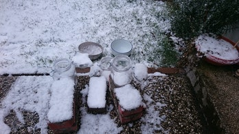 Scientists collected snow samples from the northern Germany city of Bremen to compare to the Arctic ...