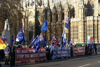 Brexit Protestors (31339189437)