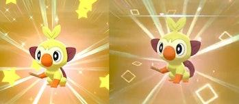 Pokemon Sword and Shield Square Vs Star Shiny Pokemon
