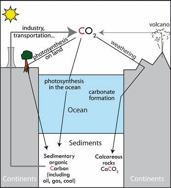 geological carbon cycle