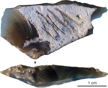 Neanderthal stone tool