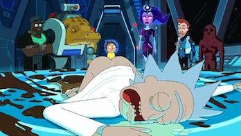 'Rick and Morty' Season 3 Vindicators