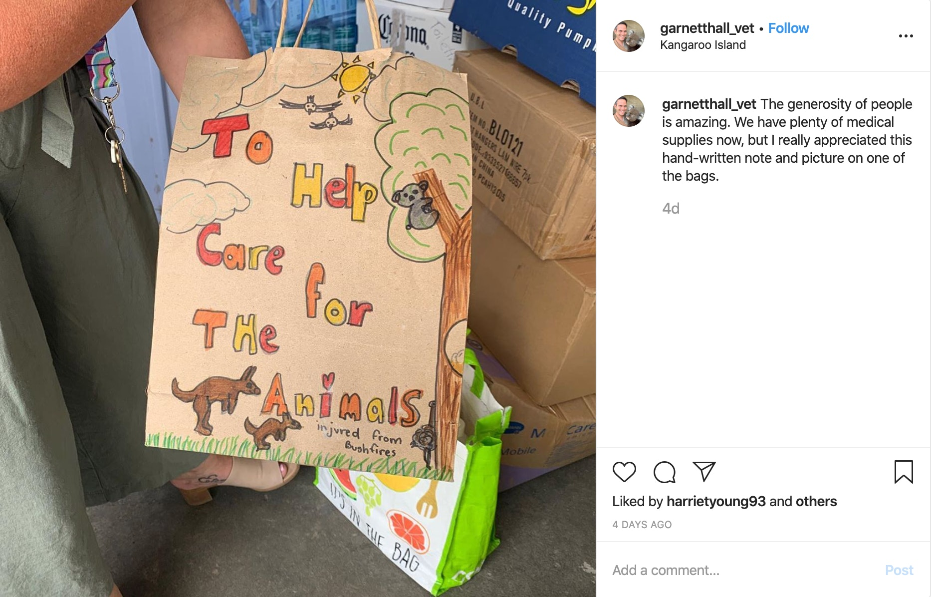 child's drawing of animals in Australia injured by brushfires
