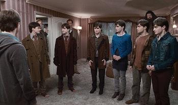 Daniel Radliffe as Harry Potter