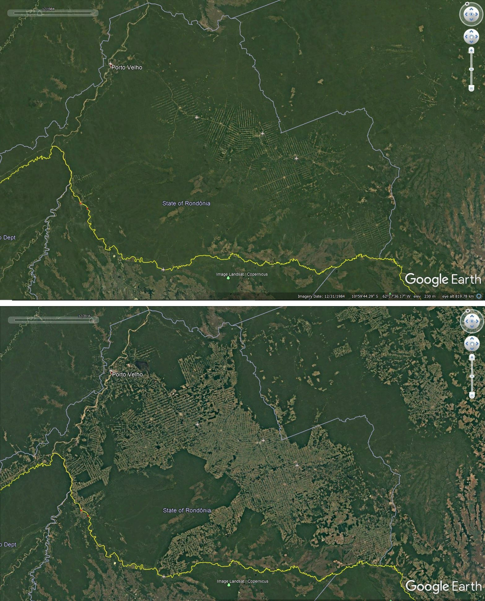 Deforestation around roads in Rondonia, Brazil, 1984-2016.