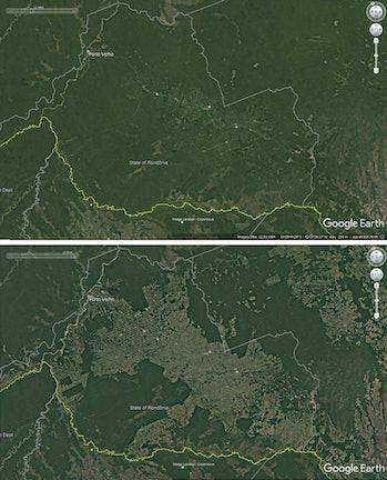 Deforestation around roads in Rondonia, Brazil, 1984-2016.