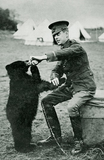 The real-life inspiration for Winnie-the-Pooh was a female black bear that was transplanted to London during World War I.