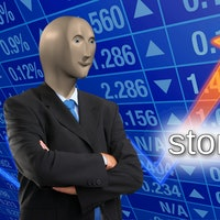 """Avoid risky """"stonks"""" by answering a basic investing question"""