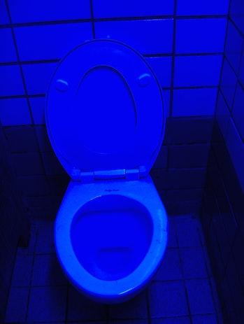 blue light toilet